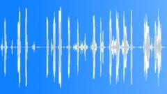 Feedback,Microphone,Handling,Squeals 1 Sound Effect