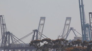 Stock Video Footage of Port of Long Beach shipyard container cranes - telephoto zoom out