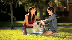 Mom & Daughter Bathing Family Bulldog Stock Footage