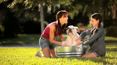 Young Mother & Daughter Bathing Family Bulldog - stock footage
