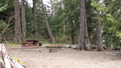 Camp Site Surround Vancouver Island.m2ts Stock Footage