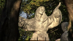 Statue of St Francis at La Foresta  Stock Footage