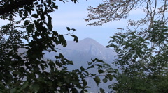 Italy Lacy leaves and mountain Stock Footage