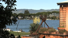 A yucca and anchor by a Ligurian estuary  Stock Footage