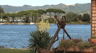 Anchor and yucca by an estuary in Liguria  Stock Footage