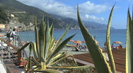 Stock Video Footage of Italy Cinque Terra maguey 2