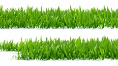 Growing grass with alpha channel Stock Footage