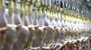Food processing factory Stock Footage