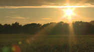 Sunset over green field Stock Footage