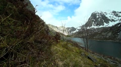 Lofoten mountains and fjord Stock Footage