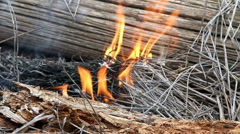 Potential for disaster as fire fanned by wind starts in dry grass HD-P 0403 Stock Footage