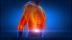 Human chest medical x-ray scan Stock Footage