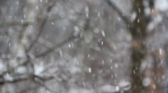 Stock Video Footage of Winter snow