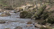 Small river Stock Footage