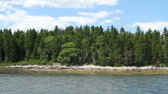 Maine Island with Pine Trees - stock footage