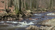 Wild river Stock Footage