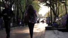 UPenn Locust Walk 2 Stock Footage