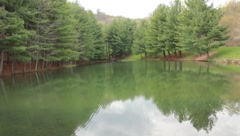 Pond and trees on a peaceful summer day Stock Footage