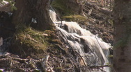 Stock Video Footage of spring water 2