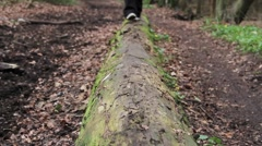 Girl in muddy converse shoes walks along log - stock footage