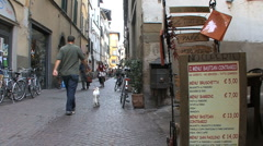 Lucca street with dog and bike Stock Footage