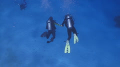 Scuba couple holding hands - stock footage