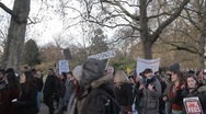 Protesters in Horseguards Parade Stock Footage