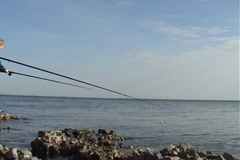 Fishing team - family fishing at the beach Stock Footage