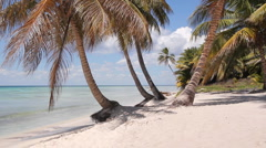 Desert island shoreline. - stock footage