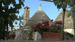 Pulia trulli with flowers 2 - stock footage