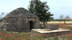 Trullo field hut in Pulia - stock footage
