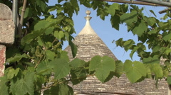 Italy trullo roof with grape vines zoom out - stock footage