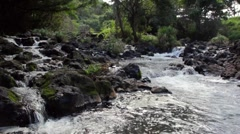 A jungle stream and waterfall Stock Footage