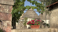 Italy trulli with flowers and grape vines - stock footage