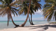 Desert island beach. Stock Footage