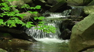 Stock Video Footage of Peaceful Mountain Creek 1