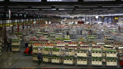 Aalsmeer Flower Auction Market in Holland Stock Footage