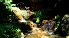 Waterfall in australian bush Stock Footage