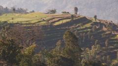 Nepal: PO of Terraced fields - stock footage