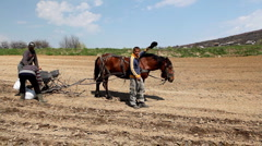 Traditional Way of Sowing Corn on a Corn Field Hill, Old Style Hard Labor, Horse Stock Footage