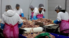 Food processing plant - stock footage