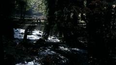 Montain stream Stock Footage