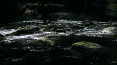 Montain stream - stock footage