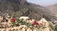 Stock Video Footage of road to Feighnan lodge, Jordan