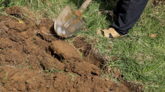 Man diging ground in his garden in spring time Stock Footage