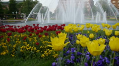 Flower Fountain - stock footage