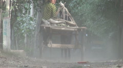 China rural scene veiled woman donkey cart Islam muslims Uyghur minority Stock Footage
