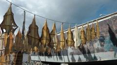 Stockfish Stock Footage