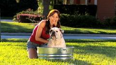 Brunette Female Bathing Her Pet Bulldog Stock Footage