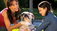 Stock Video Footage of Mom & Daughter Bathing Family Bulldog in Close up